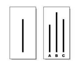 """Two boxes, one with a single vertical black line, the other with three vertical lines of different sizes with """"A, B, and, C"""" written under them."""